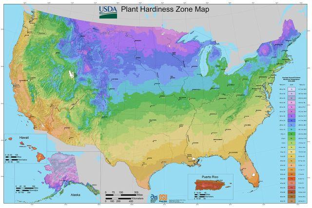 Plant Hardines Map